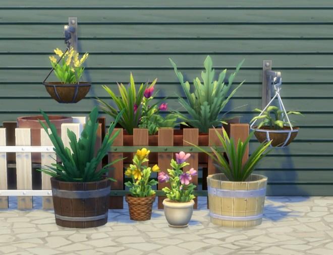 pbox_plants-modular-VI_00
